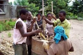 生产玉米秸秆机制木炭的技术和市场前景