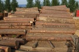 木炭基础知识2