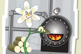 木炭之家为何要加入生物质能版块