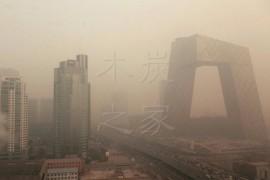 雾霾天气将促使木炭行业升级 你准备好了吗