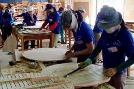 林业资源综合开发应该在木材产品深加工上下功夫
