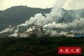 不符合环保要求的木炭厂一律关停整改,你们怎么看?