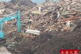 海外林业资源边皮废弃物综合开发实施攻略